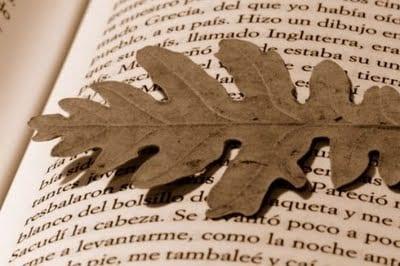 libro-otono