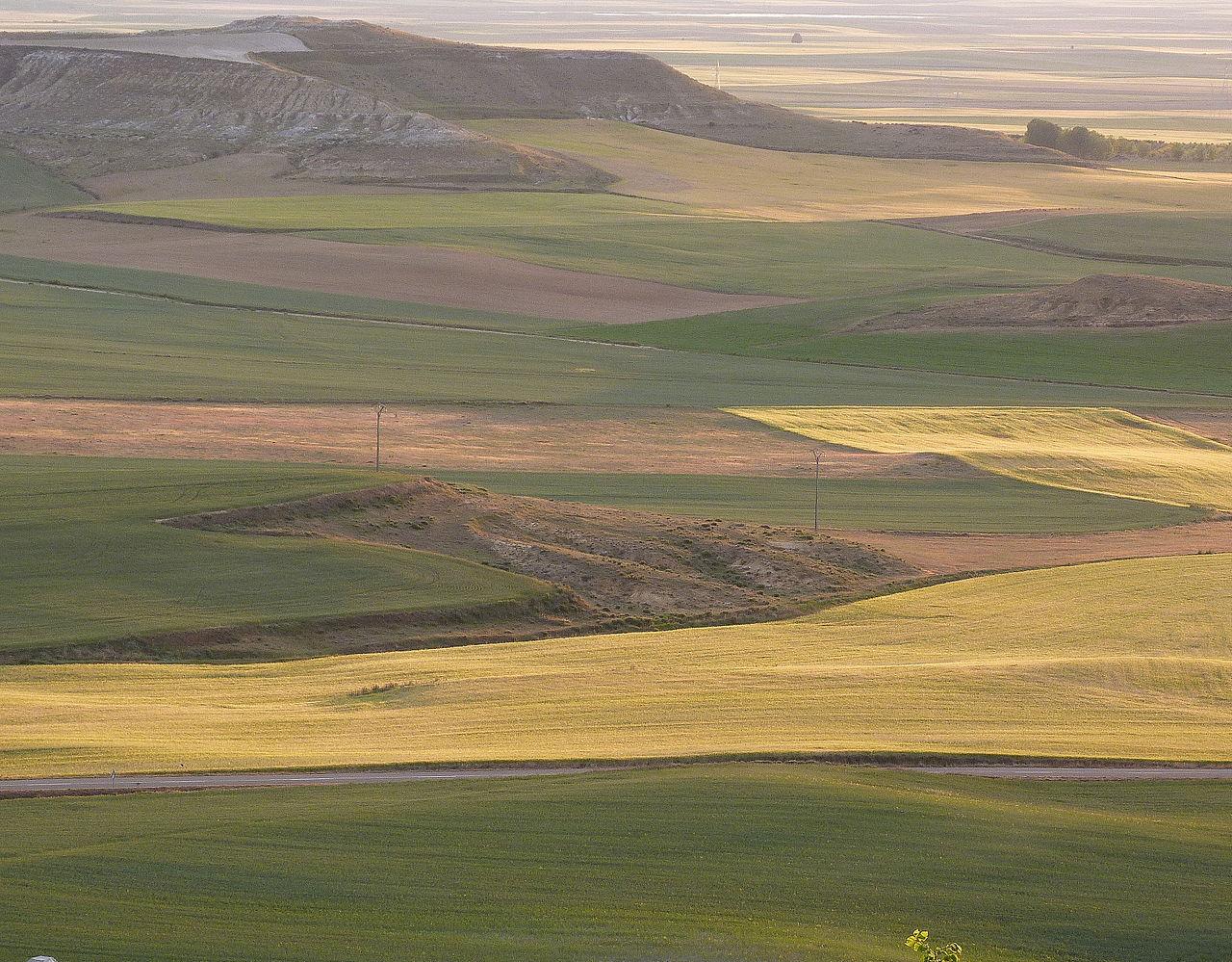Vista de los Campos de Castilla