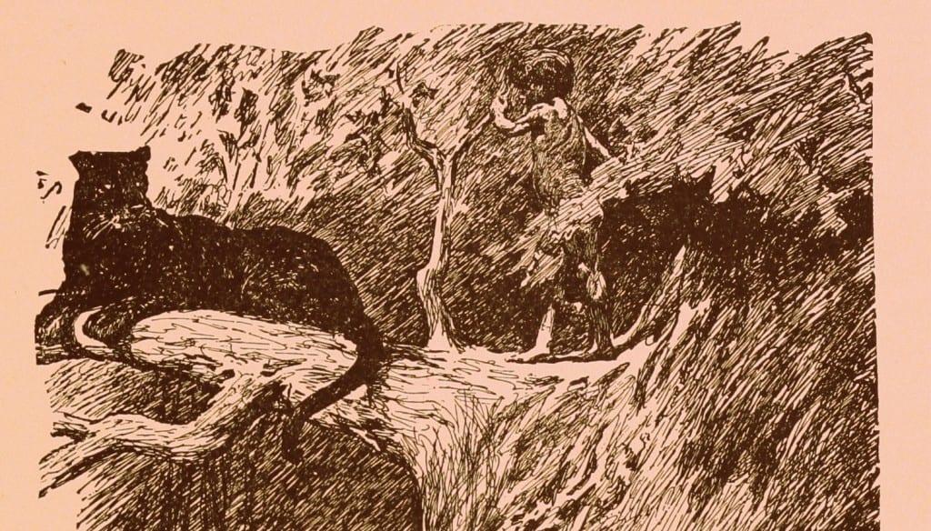 El libro de la selva Kipling