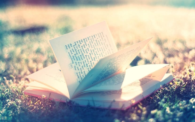 La estructura interna correcta de un libro
