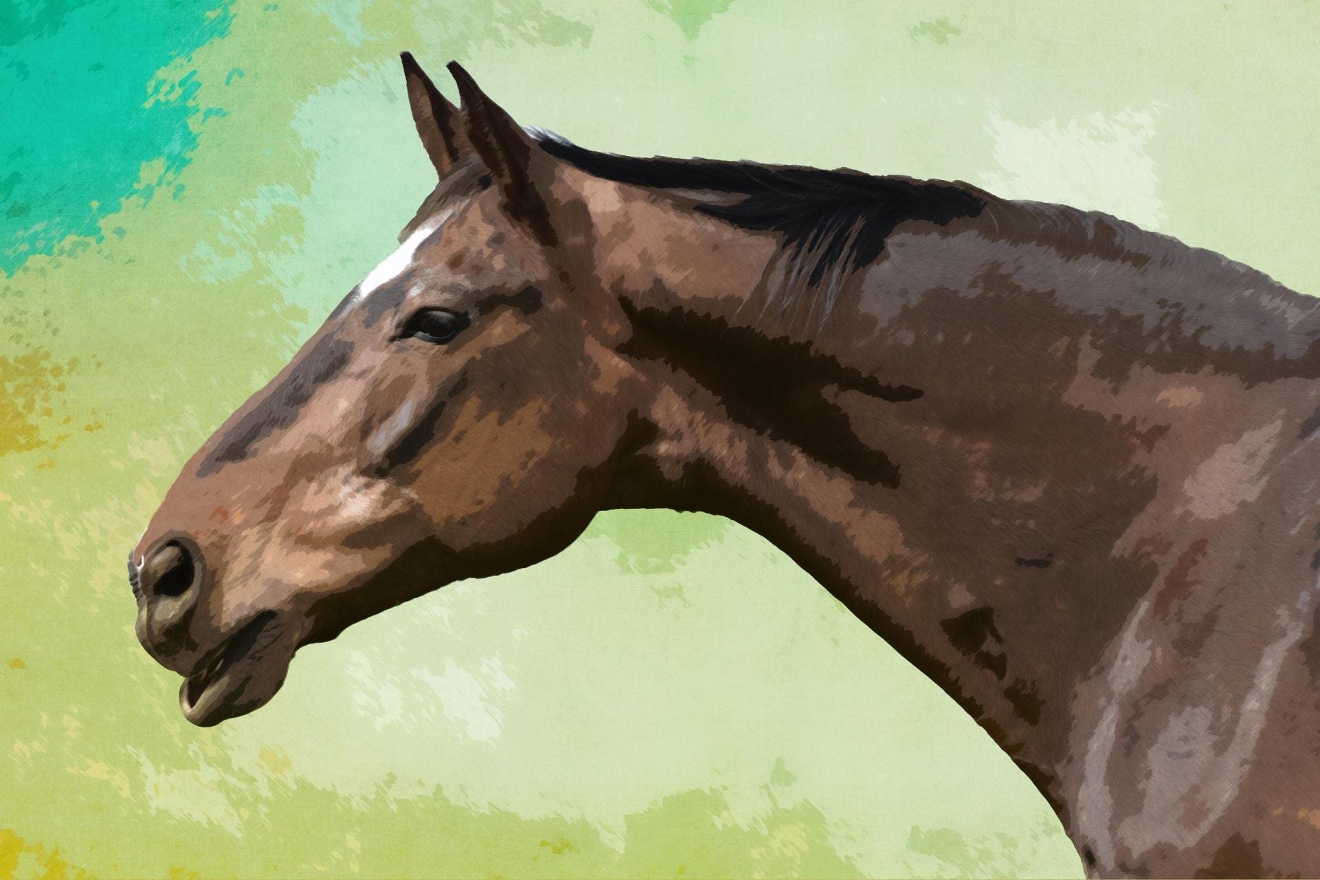 El caballo estuve presente en muchas obras de Federico García Lorca