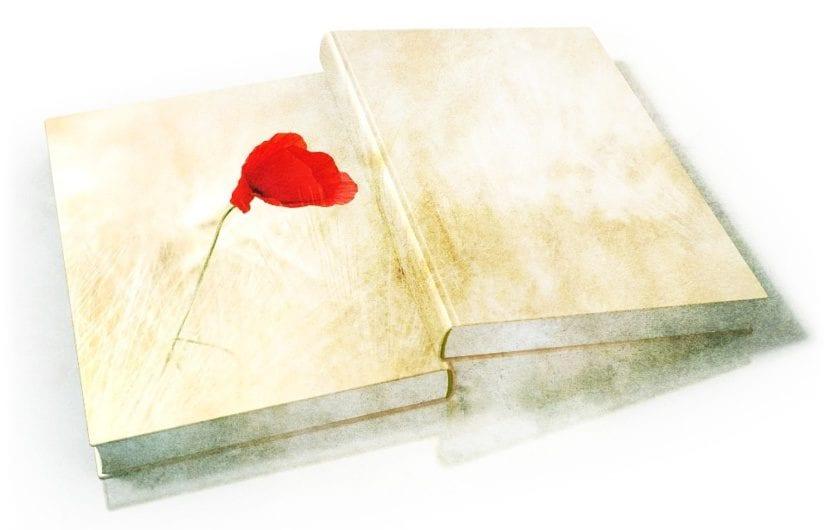 Abril Mes De Los Libros Qué Son Qué Significan 30 Pensamientos