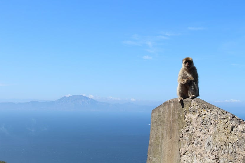 El Estrecho de Gibraltar: Escenario de Lejos del Corazón.