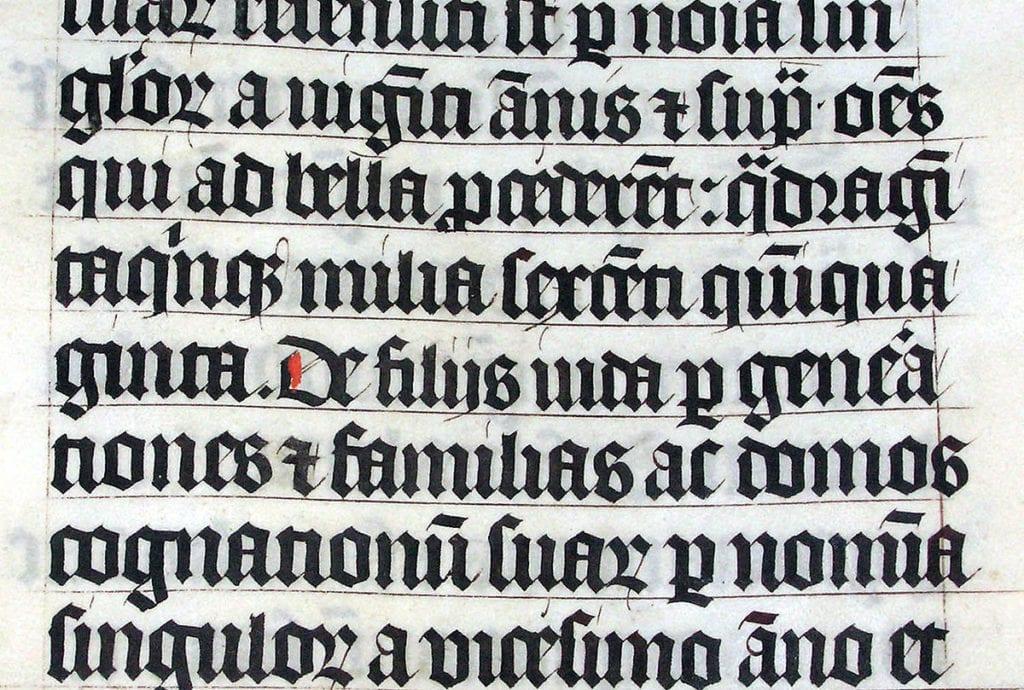 Imagen de caligrafía en latín.