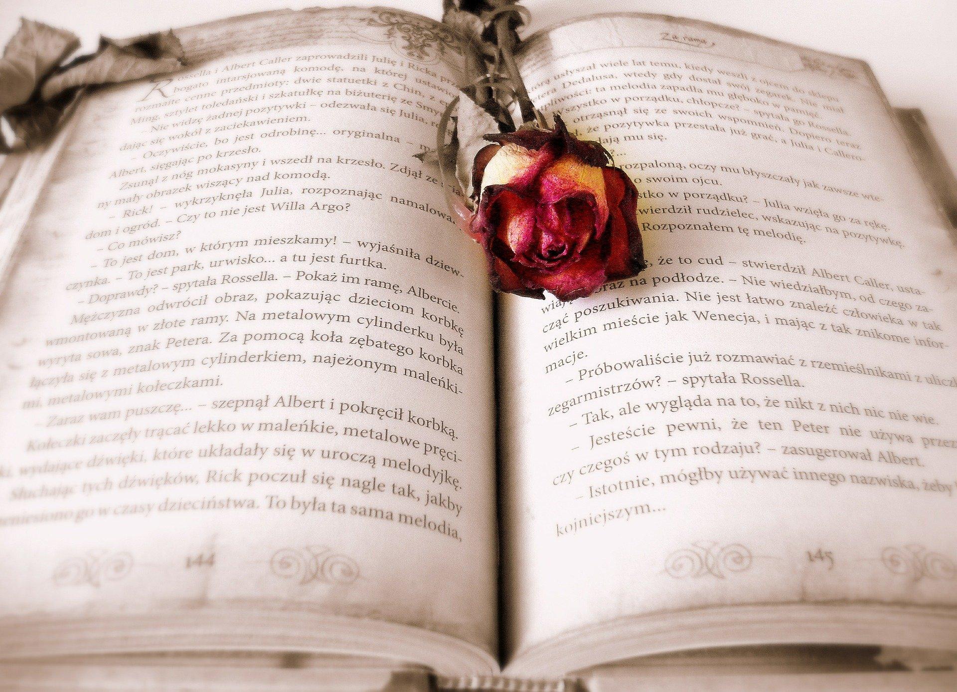 Releer libros que te gustaron el día del libro