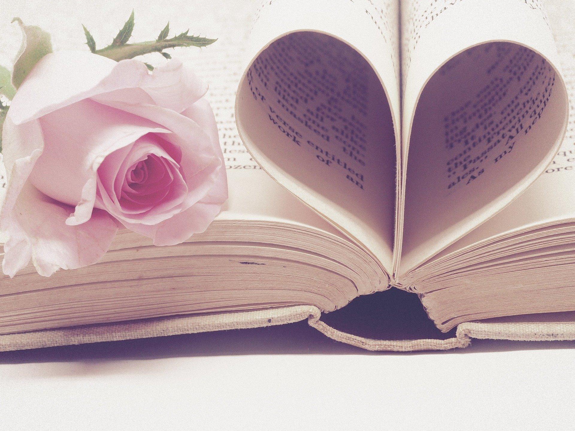Cómo celebrar el Día del Libro en casa